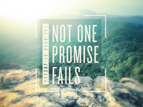 Not One Promise Fails